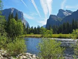 Map San Francisco To Yosemite National Park by Tips For Visiting Yosemite National Park In One Day