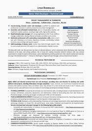 web developer resumes web developer resume exles best of resume sles program