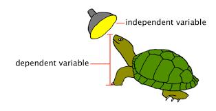 scientific variables cliparts free download clip art free clip