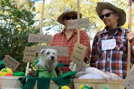 Farmers Halloween Costume 66 U0027s Adorable Dog Costumes