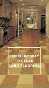 Homemade Cleaning Solution For Laminate Floors 25 Best Images About Cleaning Floors On Pinterest Homemade