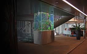 aquarium bureau aquarium central open space amenagement bureau entreprise arch