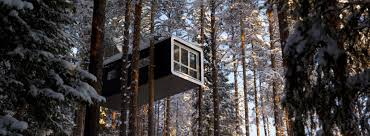 tree hotel sweden northern lights at the treehotel in sweden