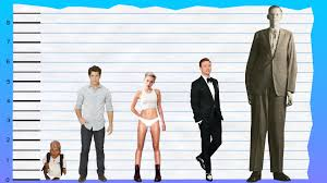 how tall is nick jonas height comparison video dailymotion