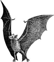 bats images clip art flying fox bat clipart etc