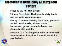yin deficiency diet diet and a healthy body