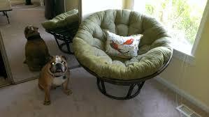 Papasan Chair In Living Room Awesome Papasan Chair In Living Room Design Seat With Style In