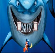 Finding Nemo Light Fish Amazon Com Got You Covered Fish Are Friends Not Food Bruce