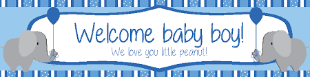 welcome home baby shower welcome baby boy banner with elephants diddams party store
