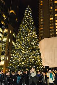 Christmas Tree Shopping Tips - lighting the holiday tree at cf pacific centre u0026 the black friday