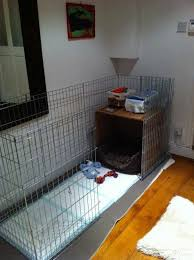 Best 25 Crate Bed Ideas by Best 25 Puppy Playpen Ideas On Pinterest Puppy Crate Crate