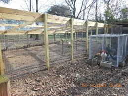 Backyard Chicken Run by Pictures Of The New Run I Had Built For My Girls Backyard Chickens