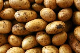 potato allergy risk factors and symptoms