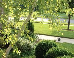 ornament landscaping trees and shrubs ideas wonderful ornamental
