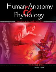 Answer Key For Anatomy And Physiology Lab Manual Human Anatomy And Physiology Laboratory Manual With Photo Atlas