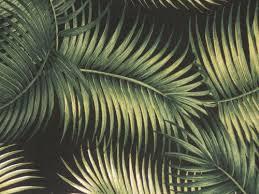 Upholstery Fabric Hawaii 29 Best Barkcloth Images On Pinterest Vintage Hawaiian Bird Of