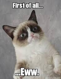 Eww Gross Meme - 50 shades of grumpy cat chap 56 fixed as ns a better class of
