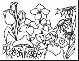 impressive spring coloring pages with springtime coloring pages