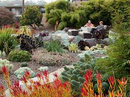 Landscape Ideas For Front Yard by Drought Tolerant Landscape Ideas Front Yard Drought Tolerant