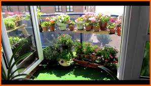 gardening in apartment christmas ideas best image libraries