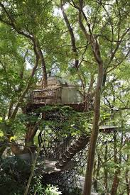 Amazing Tree Houses by Amazing Tree Houses For Grown Ups To Spend Night
