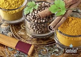 ayurvedische küche münchen die festliche ayurvedische küche indien aktuell