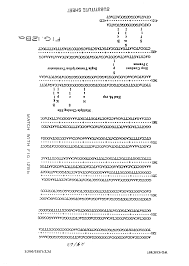 Smt Operator Resume Au 1992 029110 A Bacterial Expression Vectors Containing Dna