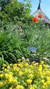 Green Bay Botanical Gardens Enjoying A Visit The Botanical Gardens Speech Spark Green