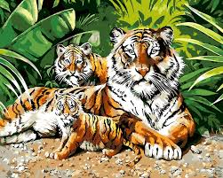 tiger and cubs paint by numbers kits for adults novelty paintings
