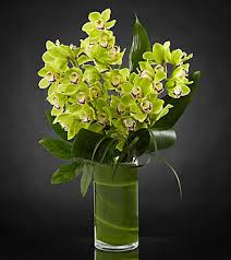 Orchid Cut Flowers - vision luxury orchid bouquet 8 stems vase included