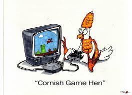 Hen Meme - cornish game hen by lentzgle on deviantart
