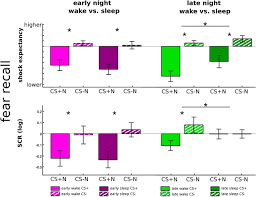rem sleep is causal to successful consolidation of dangerous and