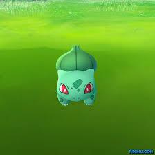 Pokemon Meme Generator - pokemon go meme generator pacmu