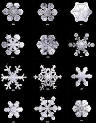 snowflake bentley book snow crystals by w a bentley and w j hunphreys we have always
