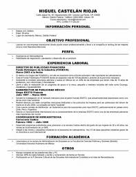 resume template popular resume formats free resume template