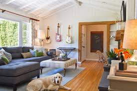 Family Room Vs Living Room by Tips For A Pet Friendly Home Hgtv