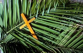 palms for palm sunday purchase jaipur christian community gears up for palm sunday observance