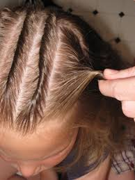 twisted cornrows in hairland