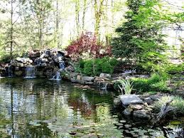 22 best ponds images on pinterest backyard ideas garden ideas