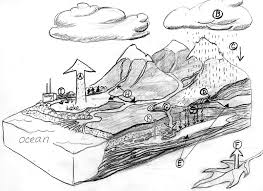 blank water cycle diagram worksheet sketch coloring page