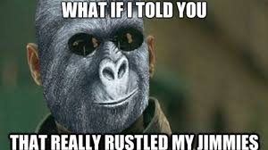 Gorilla Munch Meme - that really rustled my jimmies know your meme