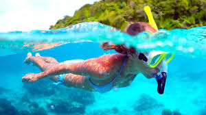 snorkeling images Best oahu snorkeling jpg