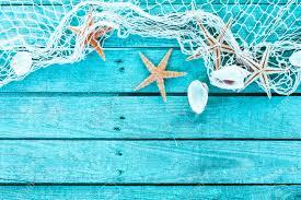 delicate nautical border with fishing net sea shells and starfish
