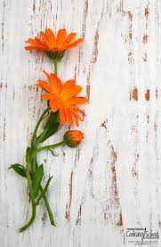 5 anti inflammatory herbs in your own backyard