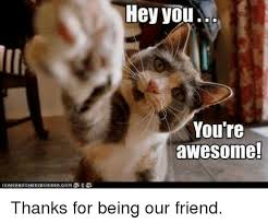 You Are Awesome Meme - hey you you re awesome thanks for being our friend meme on me me