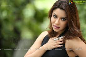 payal ghosh exclusive image 14 tollywood heroines images