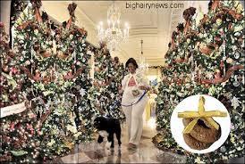 white house has 2 632 trees world news bureau