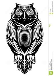 tribal owl tattoo majestic owl stock image image 32475061