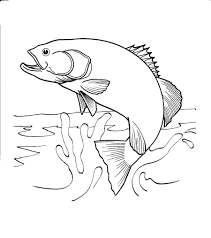 salmon fish coloring page salmon jumping out of water coloring page google search craft