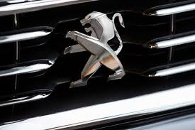 peugeot india india is said to discuss 6 billion lotte peugeot investments